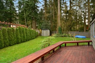 """Photo 41: 2624 140 Street in Surrey: Sunnyside Park Surrey House for sale in """"Elgin / Chantrell"""" (South Surrey White Rock)  : MLS®# F1435238"""