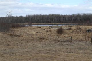 Photo 11: Twp 510 RR 33: Rural Leduc County Rural Land/Vacant Lot for sale : MLS®# E4239253