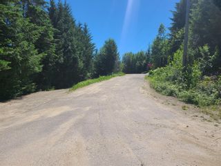 Photo 12: Lot 62 Terrace Place, in Blind Bay: Vacant Land for sale : MLS®# 10232785