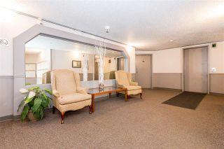 Photo 6: 206 17109 67 Avenue in Edmonton: Zone 20 Condo for sale : MLS®# E4255141