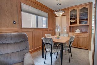 Photo 10: 119 35 Street NW in Calgary: Parkdale Detached for sale : MLS®# A1085118