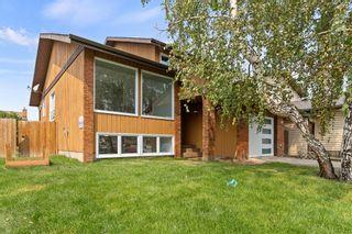 Photo 36: 43 Castlefall Crescent NE in Calgary: Castleridge Detached for sale : MLS®# A1136695