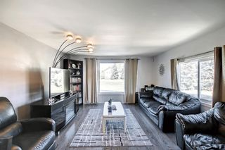 Photo 15: 40 649 Main Street N: Airdrie Mobile for sale : MLS®# A1153101