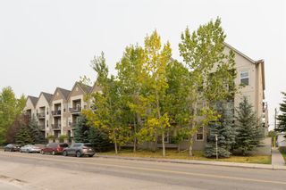 Photo 1: 102 15304 BANNISTER Road SE in Calgary: Midnapore Row/Townhouse for sale : MLS®# A1035618