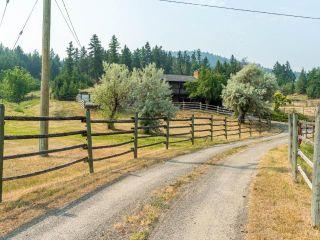Photo 12: 3140 ROBBINS RANGE ROAD in Kamloops: Barnhartvale House for sale : MLS®# 163482