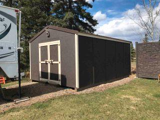 Photo 34: 5978 JADE Road in Fort St. John: Fort St. John - Rural E 100th House for sale (Fort St. John (Zone 60))  : MLS®# R2580860