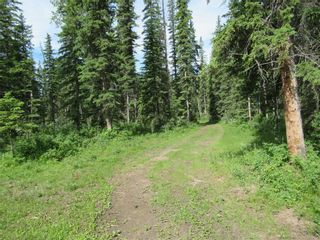 Photo 40: 70041 Highway 591: Rural Clearwater County Detached for sale : MLS®# C4305359
