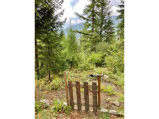 Photo 20: 1969 SANDY ROAD in Castlegar: Vacant Land for sale : MLS®# 2461033