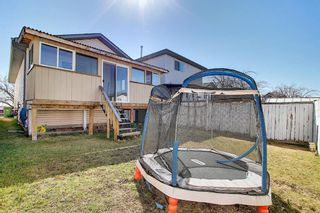 Photo 30: 78 Appleburn Close SE in Calgary: Applewood Park Detached for sale : MLS®# A1100841