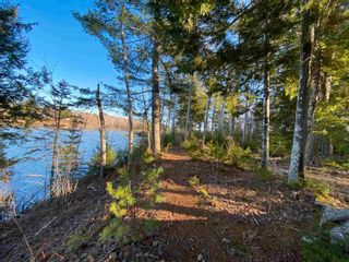 Photo 15: Saunders Road in Durham: 108-Rural Pictou County Vacant Land for sale (Northern Region)  : MLS®# 202108674
