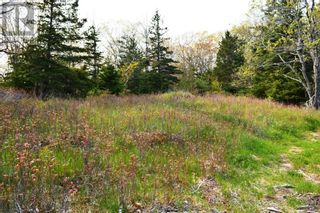 Photo 10: Old Kettle Road in Port Medway: Vacant Land for sale : MLS®# 202113253