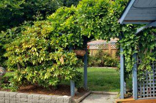 Photo 10: 6376 MARMOT Road in Sechelt: Sechelt District House for sale (Sunshine Coast)  : MLS®# R2525039