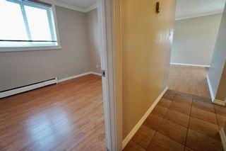 Photo 12: 2 10904 159 Street in Edmonton: Zone 21 Condo for sale : MLS®# E4250619