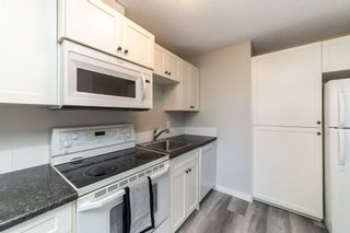 Photo 15: 225 95 MCKENNEY Avenue: St. Albert Condo for sale : MLS®# E4238438