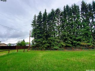 Photo 2: 107 2nd Avenue South in Pierceland: Residential for sale : MLS®# SK871637