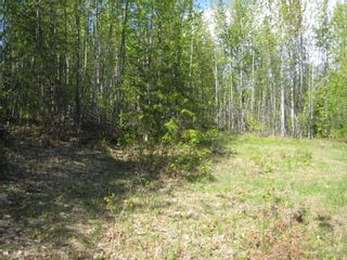 Photo 3: 9 Dogwood Crescent in Eagle Bay: Land Only for sale : MLS®# 10008245