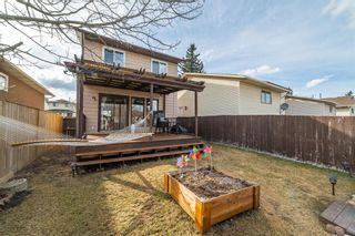 Photo 32: 49 Templeson Crescent NE in Calgary: Temple Detached for sale : MLS®# A1089563