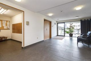 Photo 7: 413 3255 Glasgow Ave in Saanich: SE Quadra Condo for sale (Saanich East)  : MLS®# 843059