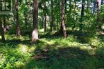 Main Photo: 15 Pirate Pl in Protection Island: Vacant Land for sale : MLS®# 879241