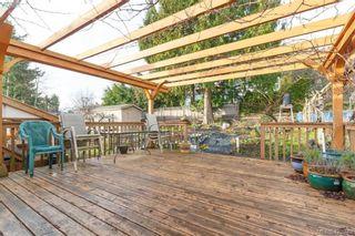 Photo 31: 4374 Elnido Cres in VICTORIA: SE Mt Doug House for sale (Saanich East)  : MLS®# 831755