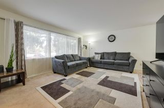 Photo 21: 14211 87 Avenue in Edmonton: Zone 10 House for sale : MLS®# E4223895