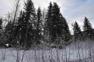 """Photo 36: 8 3000 DAHLIE Road in Smithers: Smithers - Rural Land for sale in """"Mountain Gateway Estates"""" (Smithers And Area (Zone 54))  : MLS®# R2280427"""