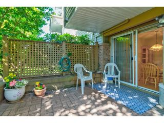 """Photo 26: 104 5565 INMAN Avenue in Burnaby: Central Park BS Condo for sale in """"AMBLE GREEN"""" (Burnaby South)  : MLS®# R2602480"""