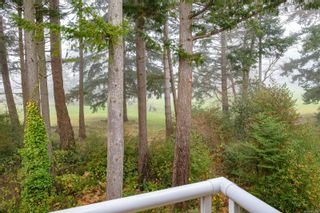 Photo 37: 308 1686 Balmoral Ave in : CV Comox (Town of) Condo for sale (Comox Valley)  : MLS®# 861312