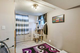 Photo 12: 168 Dover Meadow Close SE in Calgary: Dover Detached for sale : MLS®# A1082428