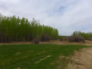 Photo 28: 50 Ave RR 281: Rural Wetaskiwin County Rural Land/Vacant Lot for sale : MLS®# E4191216