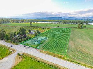 Photo 3: 32263 Harris Road in Abbotsford: House for sale : MLS®# R2385141
