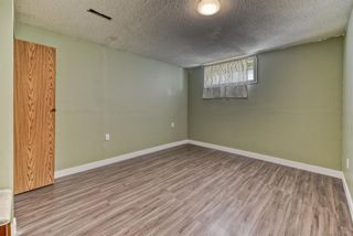 Photo 23: 262 Martinwood Place NE in Calgary: Martindale Detached for sale : MLS®# A1123392