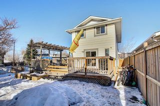 Photo 32: 211 Doverglen Crescent SE in Calgary: Dover Detached for sale : MLS®# A1060305
