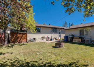 Photo 20: 31 Penworth Place SE in Calgary: Penbrooke Meadows Detached for sale : MLS®# A1120647