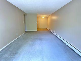 Photo 14: 305 10330 113 Street in Edmonton: Zone 12 Condo for sale : MLS®# E4250079