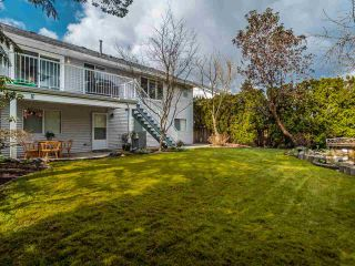 Photo 35: 8944 213 Street in Langley: Walnut Grove House for sale : MLS®# R2556291