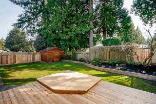 "Photo 10: 11986 COTTONWOOD Avenue in Delta: Sunshine Hills Woods House for sale in ""SUNSHINE HILLS/WOODS"" (N. Delta)  : MLS®# R2561955"