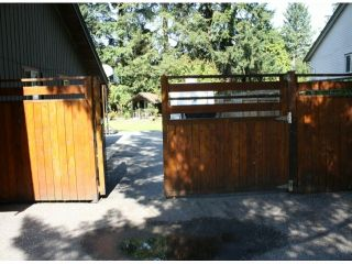 Photo 66: 34741 IMMEL Street in Abbotsford: Abbotsford East House for sale : MLS®# F1321796