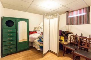 Photo 30:  in Edmonton: Zone 22 House for sale : MLS®# E4254166