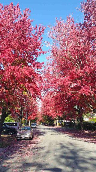 Photo 10: 6295 SUNDANCE Drive in Surrey: Cloverdale BC 1/2 Duplex for sale (Cloverdale)  : MLS®# R2296791