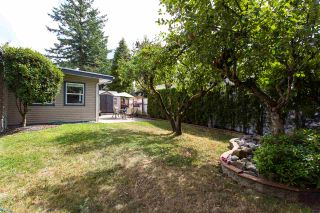 """Photo 19: 213 3665 244 Street in Langley: Aldergrove Langley Manufactured Home for sale in """"Langley Grove Estates"""" : MLS®# R2420727"""