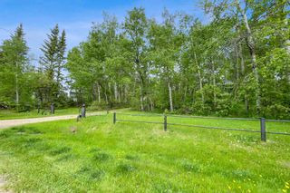 Photo 4: 84 52059 RGE RD 220: Rural Strathcona County House for sale : MLS®# E4247284