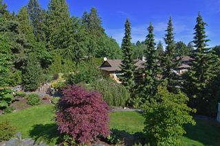 "Photo 19: 15249 62ND Avenue in Surrey: Sullivan Station House for sale in ""SULLIVAN STATION"" : MLS®# R2069524"