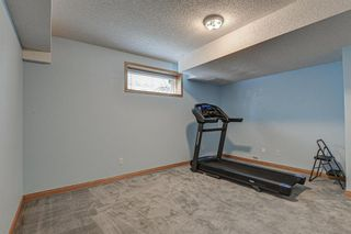 Photo 43: 143 Edgeridge Close NW in Calgary: Edgemont Detached for sale : MLS®# A1133048