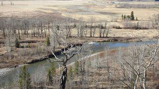 Photo 14: SE 35-20-2W5: Rural Foothills County Residential Land for sale : MLS®# A1101395