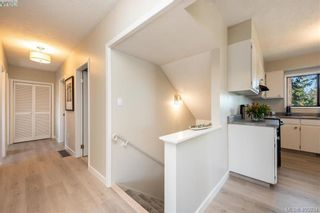 Photo 4: 1116 Nicholson St in VICTORIA: SE Lake Hill House for sale (Saanich East)  : MLS®# 806715