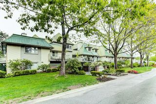"""Photo 26: 102 22275 123RD Avenue in Maple Ridge: West Central Condo for sale in """"MountainView Terraces"""" : MLS®# R2595874"""