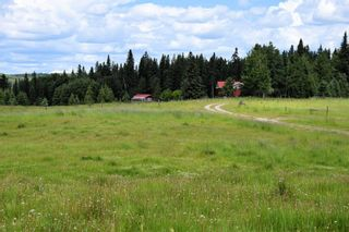 Photo 29: 7350 584 Highway: Rural Mountain View County Agri-Business for sale : MLS®# A1100517