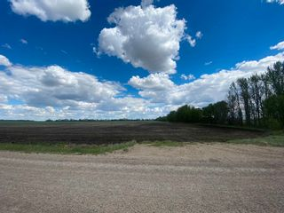 Photo 7: NW 34-49-27-W4 none: Rural Leduc County Rural Land/Vacant Lot for sale : MLS®# E4247276