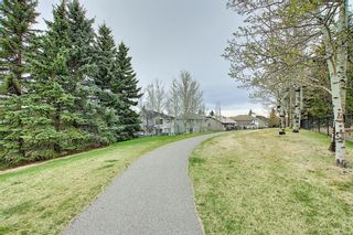 Photo 20: 212 Edgebrook Court NW in Calgary: Edgemont Detached for sale : MLS®# A1105175